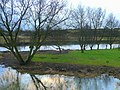 River Stour at Longham 3 - geograph.org.uk - 1126216.jpg
