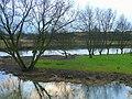 River Stour at Longham 3 - geograph.org.uk - 1126216.jpg