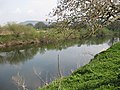 River Wye east of Goodrich Castle - geograph.org.uk - 1250843.jpg