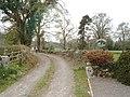 Road to Carsegowan - geograph.org.uk - 408908.jpg