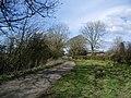 Road to Thornthwaite from Thornthwaite Syke - geograph.org.uk - 804500.jpg