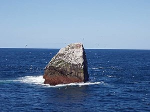 Rockall, a small, isolated rocky islet in the North Atlantic Ocean
