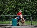 Rodeo in Panama 03.jpg
