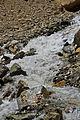Rohtang Pass 2011 IMG 9705 (6908077697).jpg