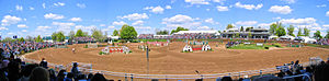 Show jumping - Show Jump Course