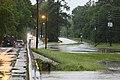 Roman Forest Flood - 4-18-16 (26445840491).jpg