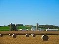 Round Bales - panoramio (3).jpg