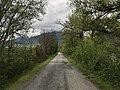 Route de la Digue à Embrun en mai 2021.jpg