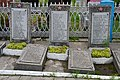 Rozhyshche Volynska-section of the mass graves of soviet soldiers-details-12.jpg