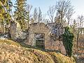 Ruine-Rauheneck-270216-2278364PS.jpg