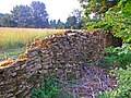 Ruined drystone wall at northeast corner of Calcot Manor complex - geograph.org.uk - 568520.jpg