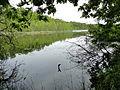 Söhring See 2012-05-18 035.JPG