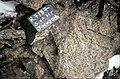 S of Mt Jackson choke between clasts of gneiss breccia.jpg