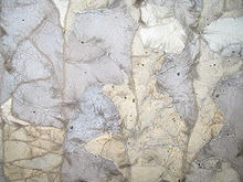 Sable Fur Thiliki 004.jpg