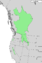 Salix prolixa range map 4.png