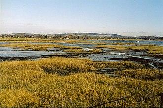 Chichester Harbour - Salt-marsh near Bosham
