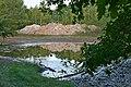 Salzhalde Abraumhalde Biotop Kaliwerk Oedesse-Berghöpen Edemissen Peine.jpg
