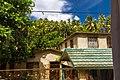 Samana 32000, Dominican Republic - panoramio (5).jpg