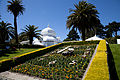 San Francisco Conservatory of Flowers-7.jpg
