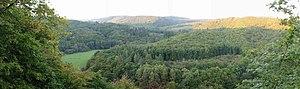Schneppenbach - Hahnenbach valley