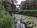 Schwerin Medewege Aubach Brücke 2014-05-29.JPG