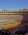 Semifinal Copa Davis '08 - Las Ventas.jpg