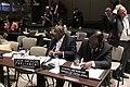 Sesión General de la Unión Interparlamentaria, continuación (8585982795).jpg