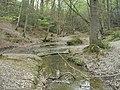 Sheepwash Ghyll, St Leonard's Forest - geograph.org.uk - 413076.jpg