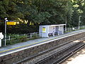 Shepherds Well railway station, EG09, August 2013.JPG
