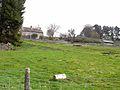 Shildon Farm - geograph.org.uk - 1350708.jpg