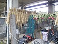 Shinkansen under girder use cases by farm tool storage.jpg