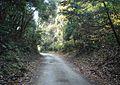 Shobee Shindenmachi, Ryugasaki, Ibaraki Prefecture 301-0031, Japan - panoramio.jpg