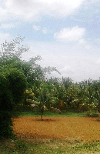 Yedeyur - Siddapura, Yediyur