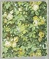 Sidewall - Floral (France), 1904 (CH 18383471).jpg