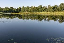 Slate Run - Buzzard's Roost Lake 2.jpg