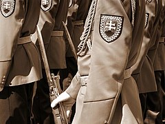 Slovak soldiers on parade, detail.jpg