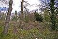 South corner of Brunswick Park Cemetery, London N11 - geograph.org.uk - 759185.jpg