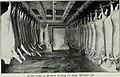 Southern pork production (1918) (14762131786).jpg