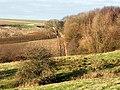 Sow Dale, Old Bolingbroke - geograph.org.uk - 107159.jpg