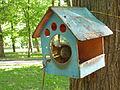 Squirrel eating. Memorial park at Sokol 5.JPG