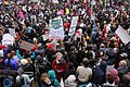 St. Louis Immigration Rally 2-4-2017 (31885903174).jpg