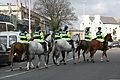St. Patricks Day Garda Horses - Flickr - D464-Darren Hall.jpg
