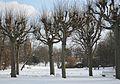 Stadtpark02.JPG