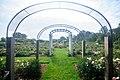 Stan Hywet Gardens (18850463028).jpg