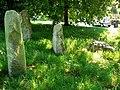 Standing stones, Winterbourne Monkton - geograph.org.uk - 885293.jpg