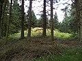 Stenbjerghuse 2012-09-05 11-13-27.jpg