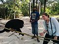 Stephi and Howler Monkey - Flickr - GregTheBusker.jpg