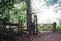 Stile by Frank's Hollow Rd - geograph.org.uk - 1544212.jpg