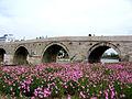 Stone bridge - Skopje, Macedonia.jpg
