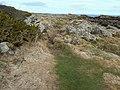 Stony path - geograph.org.uk - 750309.jpg